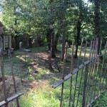dracula3d-cimitero